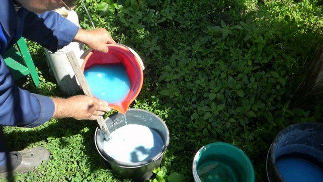 Обработка кустарников весной от вредителей и болезней бордосской смесью