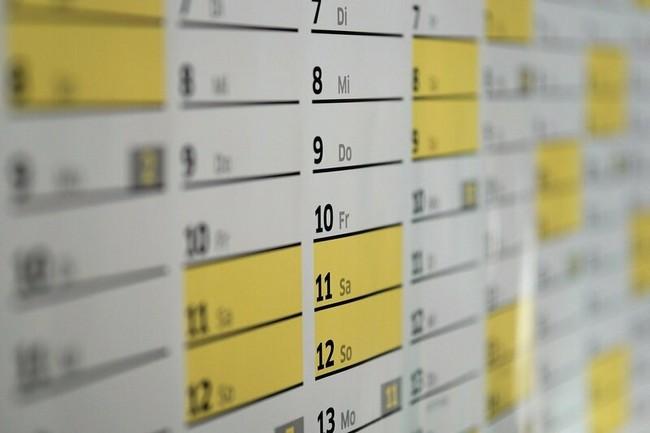 Благоприятные дни для посадки эустомы в феврале 2020