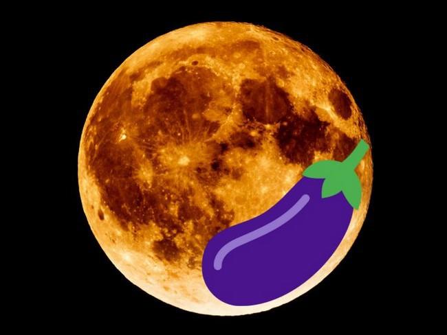 Посадка баклажан на рассаду в 2020 году по лунному календарю в Подмосковье