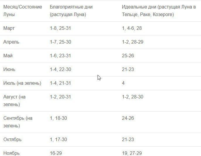 """Посадка лука """"тыканки"""" по лунному календарю в 2020"""