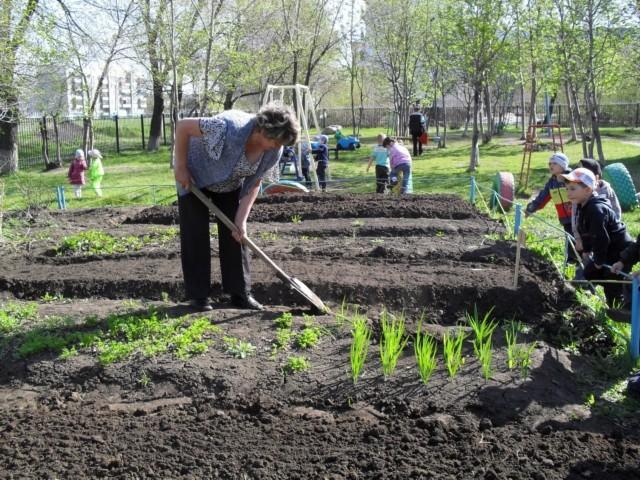 Лунный посевной календарь на апрель 2020 года садовода и огородника