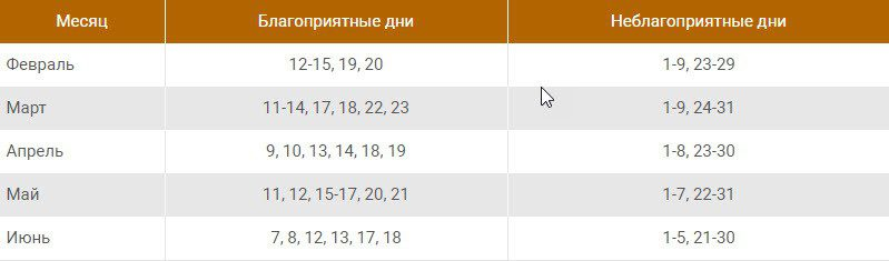 Посадка лука эксибишен на рассаду в 2020 году по лунному календарю