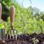 Лунный посадочный календарь на апрель 2021 года садовода и огородника