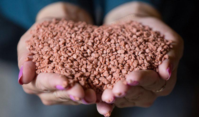 Какими удобрениями подкормить рассаду