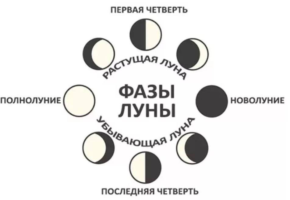 Засолка капусты в апреле 2020 по лунному календарю