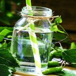 Как законсервировать березовый сок в домашних условиях без сахара