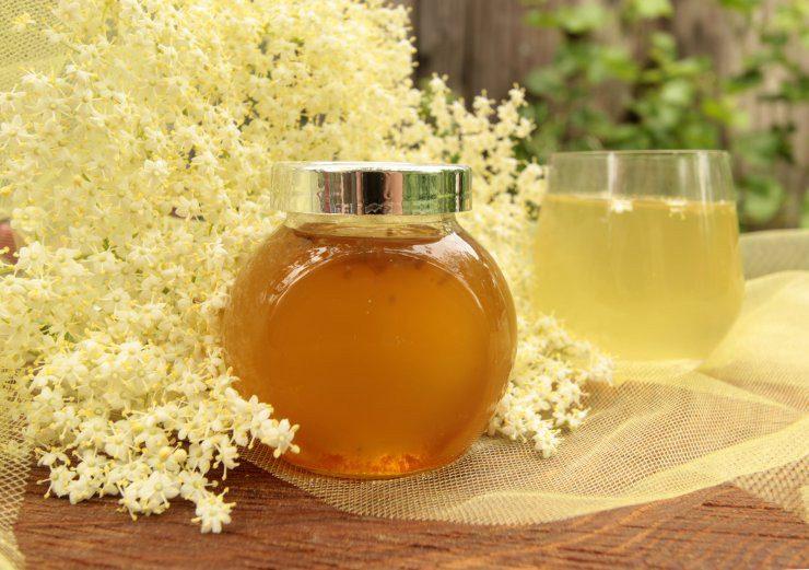 Как сварить мед из бузины в домашних условиях простой рецепт