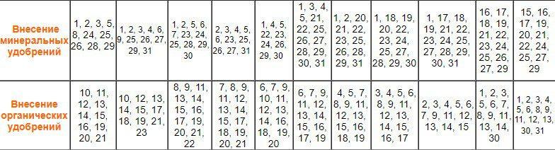 Календарь подкормок в июне 2020 года по лунному календарю