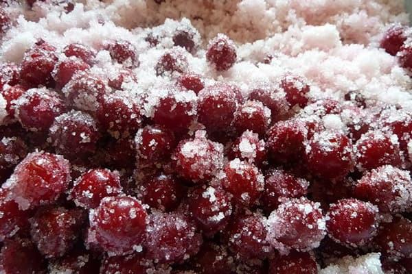 Как правильно заморозить черешню на зиму в морозильной камере
