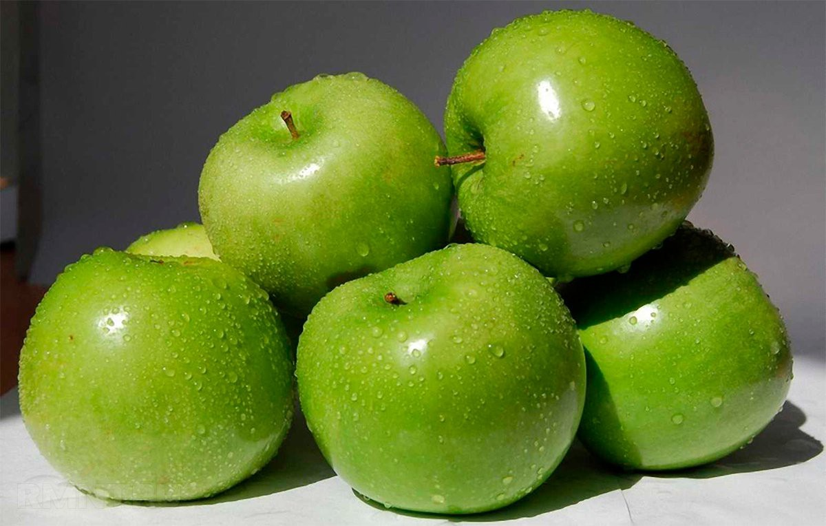 Обрезка яблони осенью для начинающих в картинках пошагово видео