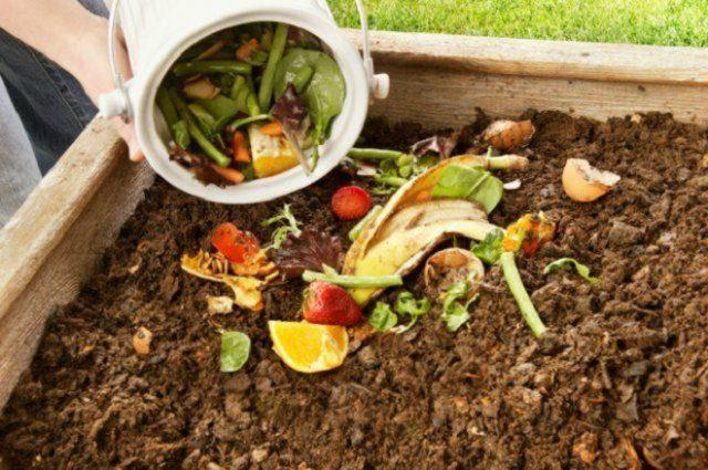 Чем удобрить почву осенью после уборки урожая