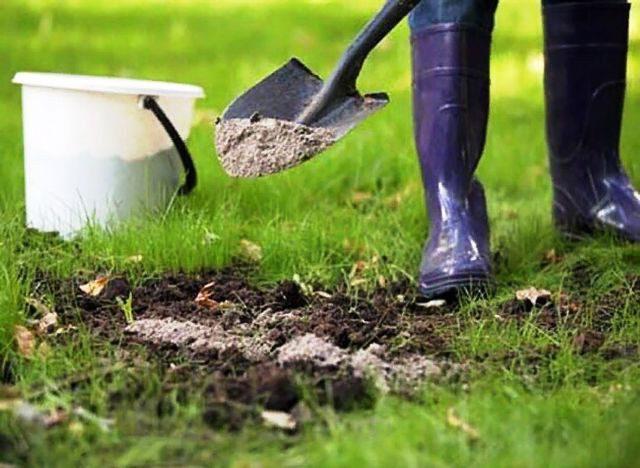 Удобрение земли осенью под зиму