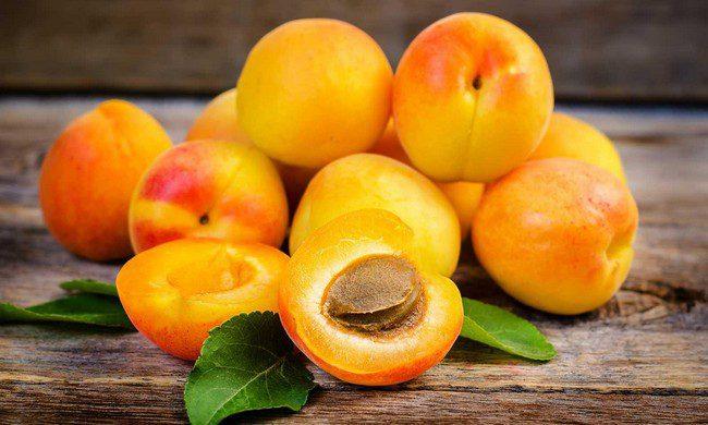Обрезка абрикоса осенью для начинающих в картинках пошагово видео