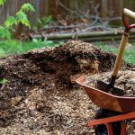 Какие удобрения вносят осенью под плодовые деревья