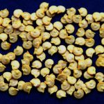 Закаливание семян перца на рассаду в холодильнике