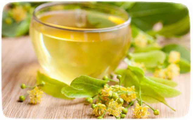 Как сварить мед с липового цветения?