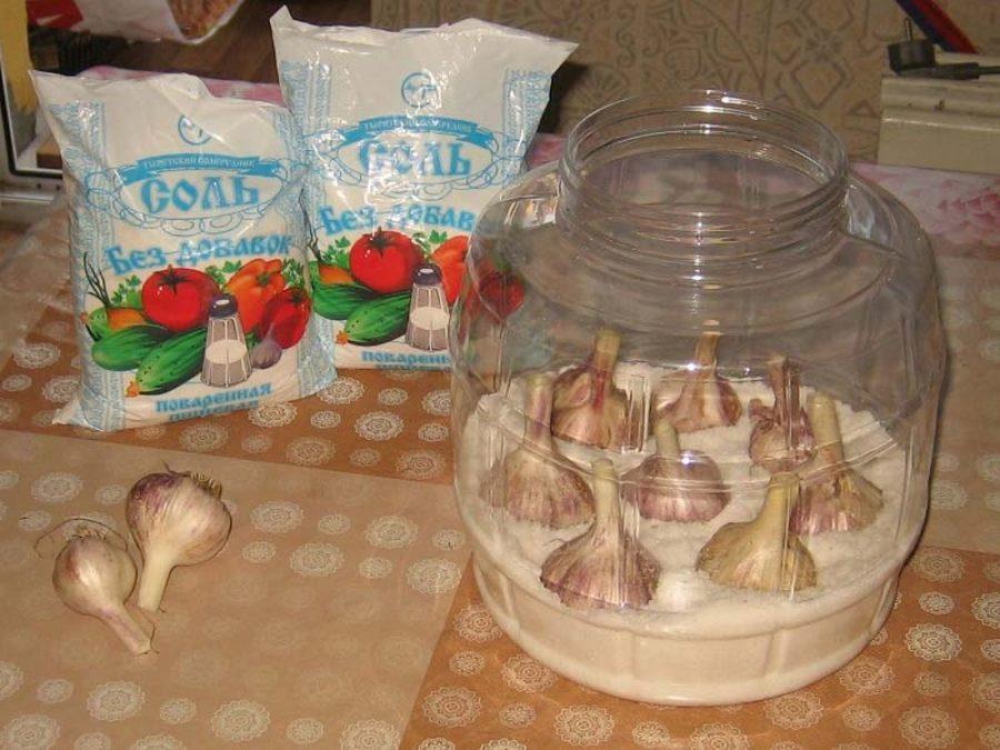 Как хранить чеснок в домашних условиях в квартире чтобы не высох?